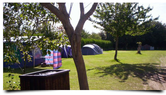 Cobbs Hill Farm - East Sussex Caravan & Camping Park